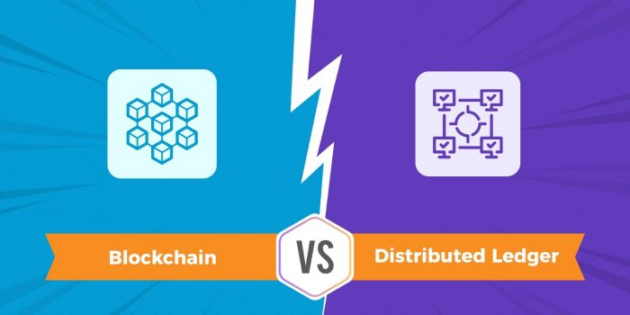 blockchain vs distributed ledger
