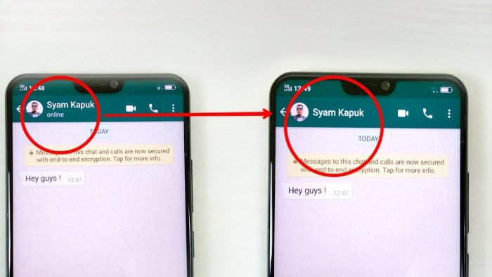 how to hide whatsapp online status on iphone